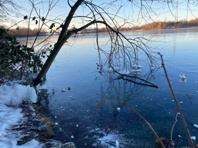Zugefrorener See vom Ufer aus